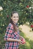 Flicka med Apple i den Apple fruktträdgården Royaltyfri Fotografi