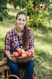 Flicka med Apple i den Apple fruktträdgården Arkivbild