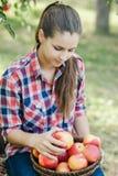 Flicka med Apple i den Apple fruktträdgården Royaltyfri Bild