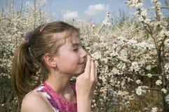 Flicka med att lukta för vita blommor Arkivfoto