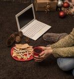 flicka med datorjuldekoren Royaltyfria Bilder