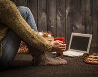 flicka med datorjuldekoren Arkivbilder