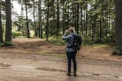 Flicka med den binokulära fotvandra Kanada Ontario sjön av det naturliga lösa landskapet för två floder i Algonquinnationalpark royaltyfria bilder