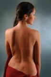 Flicka med den röda torkduken Fotografering för Bildbyråer