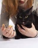 Flicka med den svarta busiga katten på vit nästan isolat royaltyfria foton