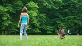 Flicka med den tyska herden för hund stock video