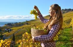 Flicka med en korg som är full av druvor royaltyfria foton