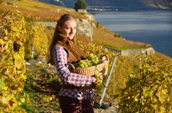 Flicka med en korg som är full av druvor arkivbilder