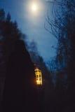 Flicka med en lykta på natten i skogen Arkivfoto