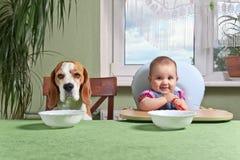 Flicka med en väntande på matställe för hund Arkivbild