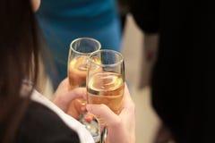 Flicka med ett exponeringsglas av champagne på partiet dricka flicka för champagne isolated rear view white Fotografering för Bildbyråer