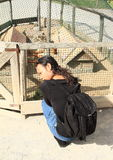 Flicka med försökskaniner Royaltyfria Bilder