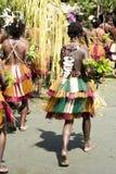 Flicka med härlig handgjord tillbehör på dansdräkten i Papua Nya Guinea Arkivbilder