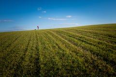 Flicka med hennes hund på gräs och himmel Arkivfoton