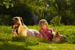 Flicka med hundkapplöpning arkivbilder