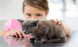 Flicka med kattungen på det veterinär- kontoret Arkivfoto