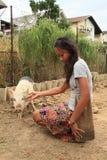 Flicka med svinet Fotografering för Bildbyråer