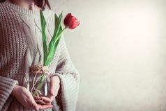 Flicka med tulpan i händer Royaltyfri Foto