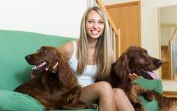 Flicka med två irländska setter hemma Royaltyfri Foto