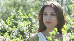 Flicka och blommande körsbär för livsstil Flickan står i naturen som blomstrar den trädgårds- körsbäret arkivfilmer