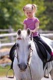 Flicka och en häst royaltyfri fotografi
