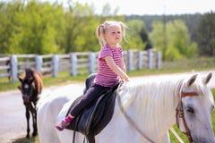 Flicka och en häst royaltyfri foto