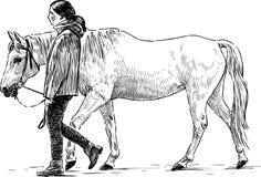Flicka och häst Arkivbild
