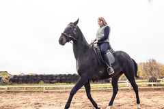 Flicka och häst Arkivfoto
