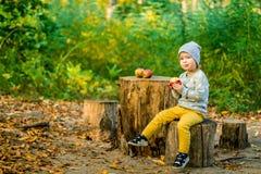 Flicka och höst Äpplen Natur Arkivbilder