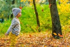 Flicka och höst Sidor Natur Fotografering för Bildbyråer