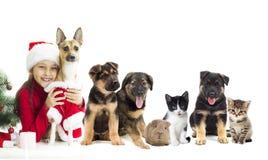 Flicka och katt och hund arkivfoto