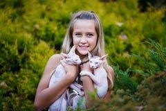 Flicka och katter Fotografering för Bildbyråer