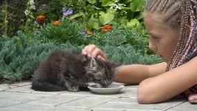 Flicka och kattunge stock video