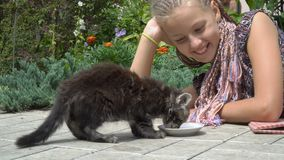 Flicka och kattunge arkivfilmer