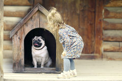 Flicka och liten hund Arkivfoto