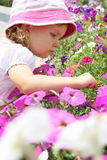 Flicka och petunia Royaltyfri Bild