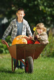 Flicka och pojke med pumpor i trädgården Royaltyfri Foto