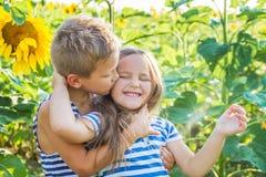Flicka och pojke som kysser bland solrosor Royaltyfri Foto