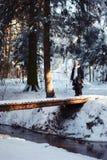 Flicka på bron Royaltyfria Foton