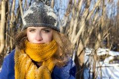 Flicka på en gå i parkera i ett snöfall Hon bär ett purpurfärgat lag och en grå hatt och gulinghalsduk closeup royaltyfria bilder