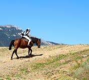 Flicka på en häst Arkivfoton