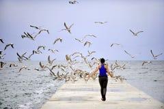 Flicka på en ponton med seagulls Royaltyfria Bilder