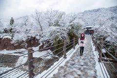 Flicka på ingångsbron som Shirakawa-går japan arkivfoto