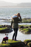 Flicka på stranden med Boston Terrier Royaltyfria Foton