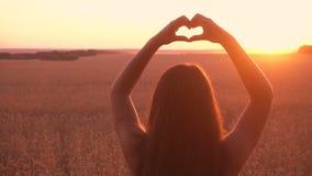 Flicka på symbol för hjärta för danande för vetefält på solnedgången stock video