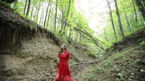 Flicka som är borttappad i skog stock video