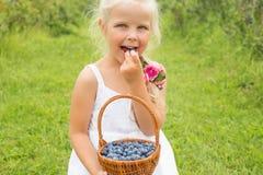Flicka som äter läckra och sunda blåbär Royaltyfria Foton