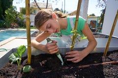 Flicka som arbetar i fruktträdgård lyftt sängträdgård royaltyfri foto