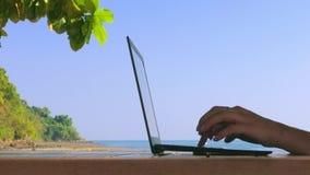 Flicka som arbetar på en bärbar dator på stranden barn för kvinna för lopp för höstaffärsskog
