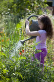 Flicka som bevattnar trädgården Royaltyfria Foton